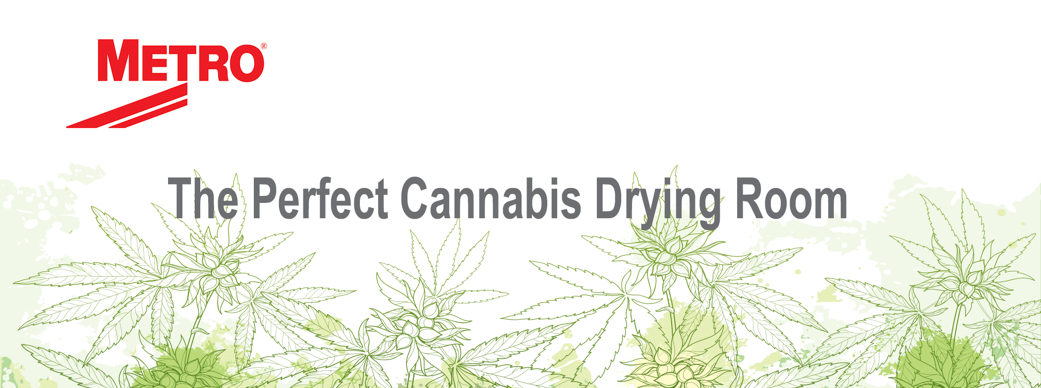 the perfect cannabis drying room
